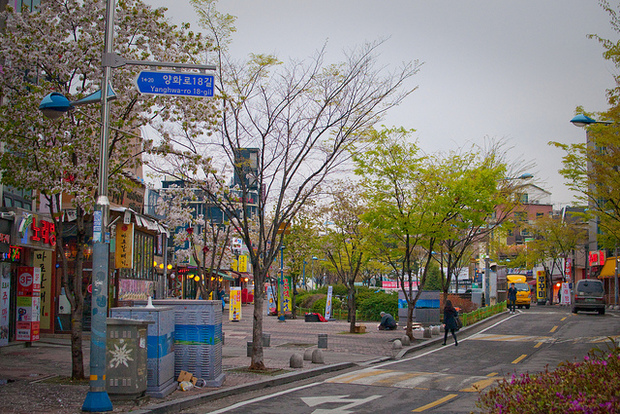 12-cheap-and-free-things-to-do-in-seoul-south-kore-04