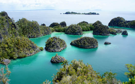 Dennis Keller, Raja Ampat, via Flickr CC BY 2.0